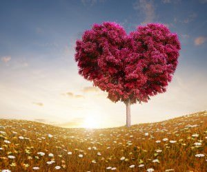 Tree Of Love Wallpaper