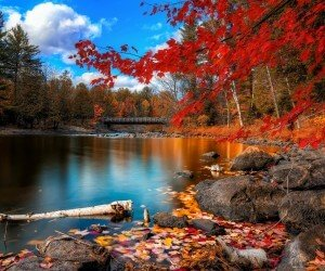 Oxtongue River, Algonquin Park Wallpaper