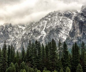 Winter Day at Yosemite National Park Wallpaper